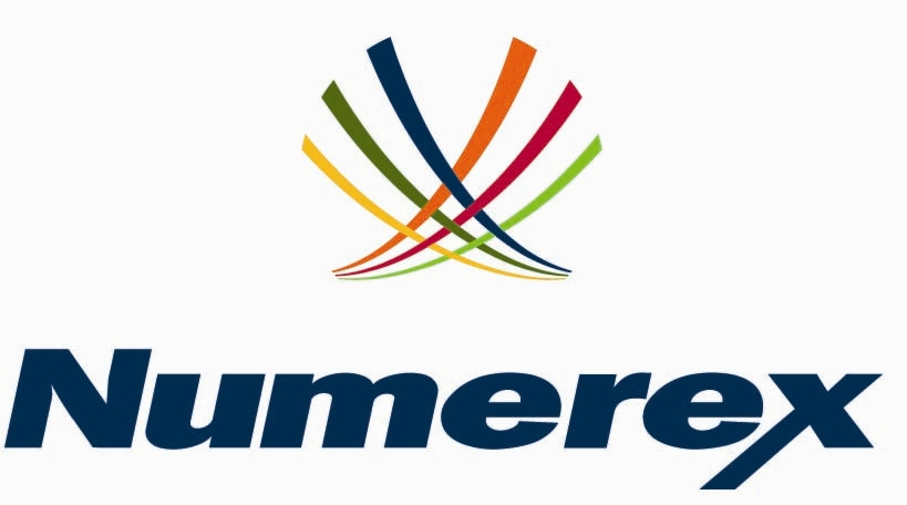 Numerex's Board of Directors Appoints Marc Zionts as Chief Executive Officer