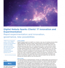 Digital Nebula Sparks Clients' IT Innovation and Experimentation