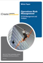 Operations Risks Management: RCSA Management and Analysis