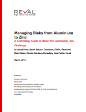Managing Risks from Aluminium to Zinc