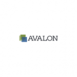 Avalon Solutions Group Unveils Payments App for Small Biz