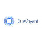 BlueVoyant Performance Demonstrates Strong, Global Demand for Cybersecurity Services
