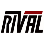 Rival Systems Named Best New Risk Management Technology Provider