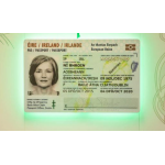 Irish Passport Card Named Best ID Document of the Year