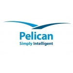 Pelican unveils PelicanFast for real-time payments processing and compliance